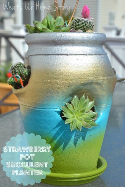 Strawberry Pot Succulent Planter