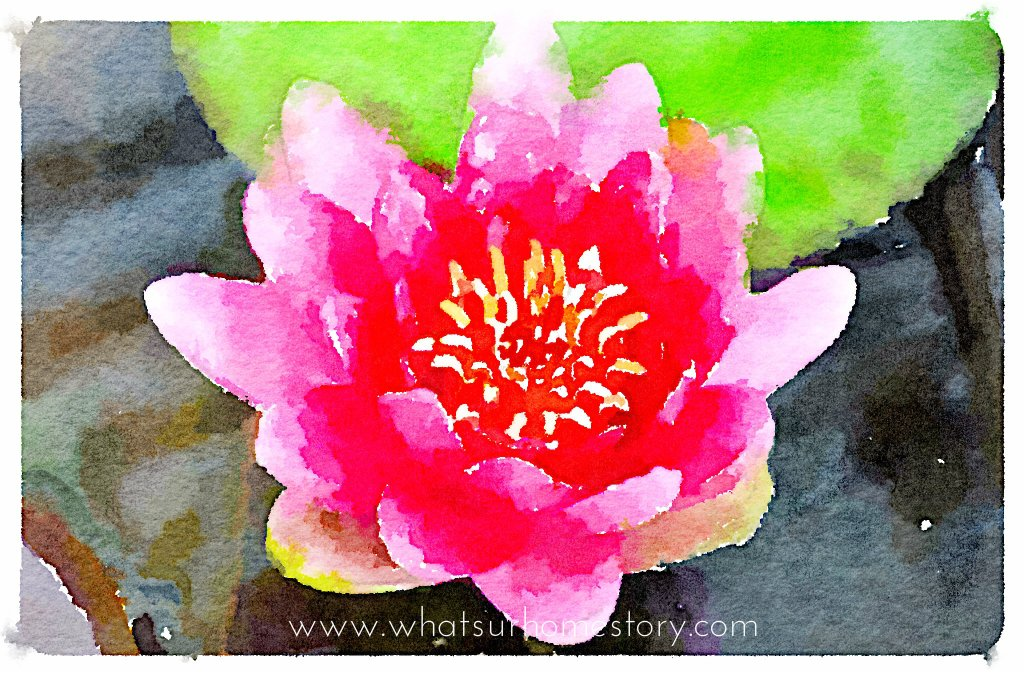 Turn Any Photo into Watercolor with Waterlogue