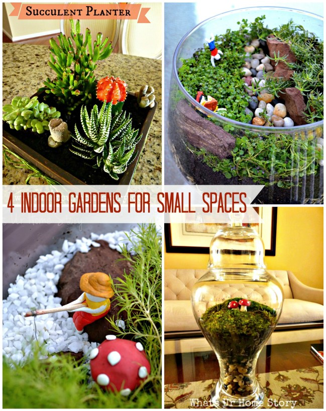 4 Indoor Gardens for Small Spaces