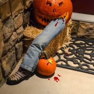 Last Minute Pumpkin Decorating & Fall Colors