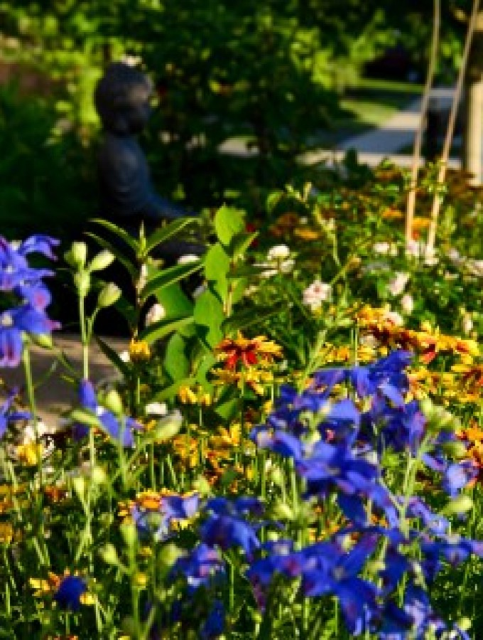 Spring garden with a Zen feel