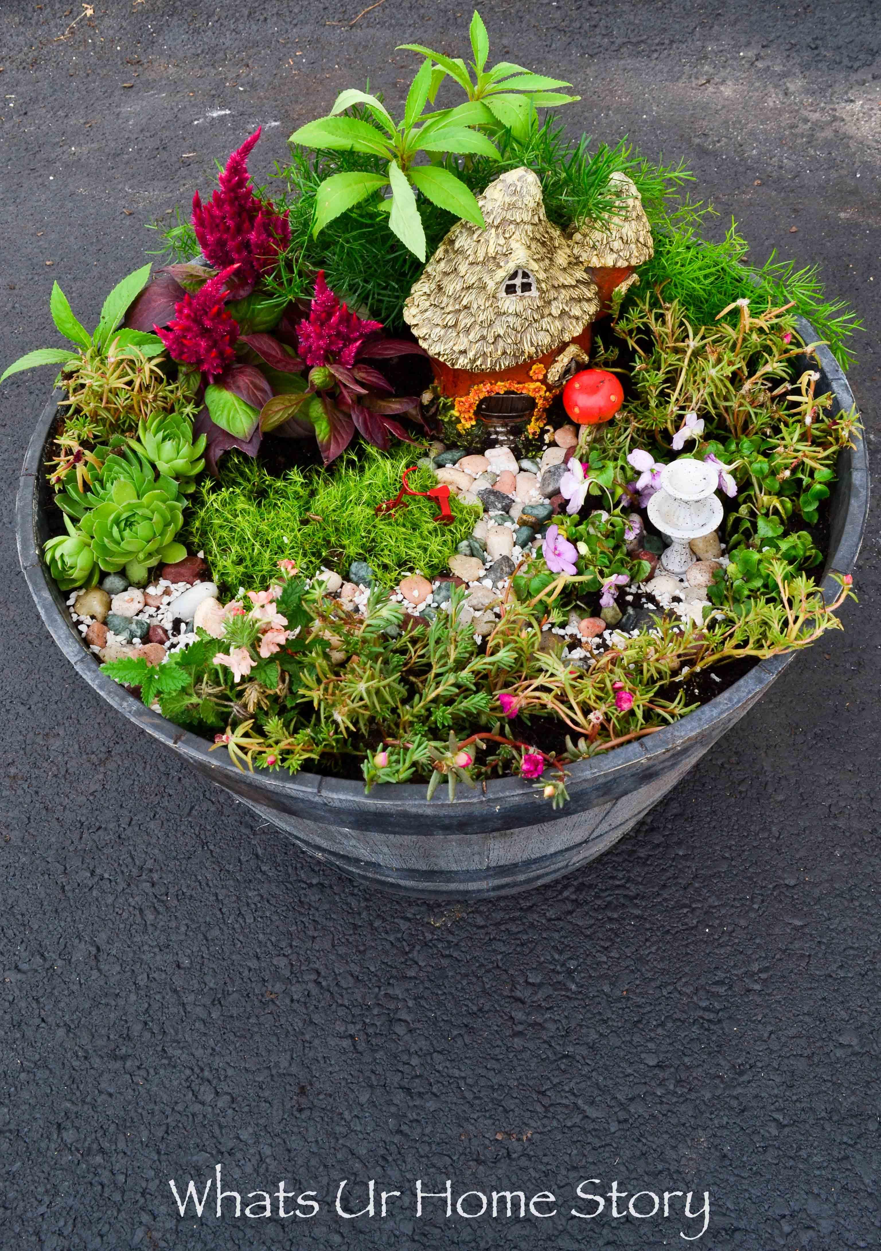 Good How To Make A Fairy Garden