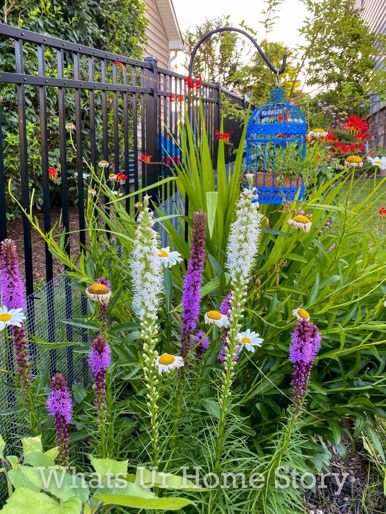 Diy Plant Pot Ideas Bird Cage Planter Whats Ur Home Story