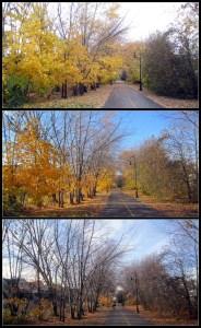 Boston Winter Transition