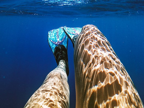 Woman's legs underwater with flippers on.