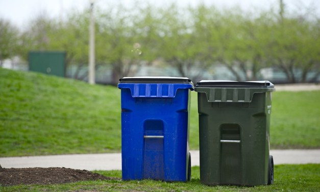 Find The Best Recycling Containers For Different Occasions