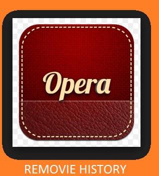 remove history
