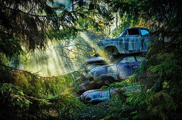 Car Graveyards, Dieter Klein