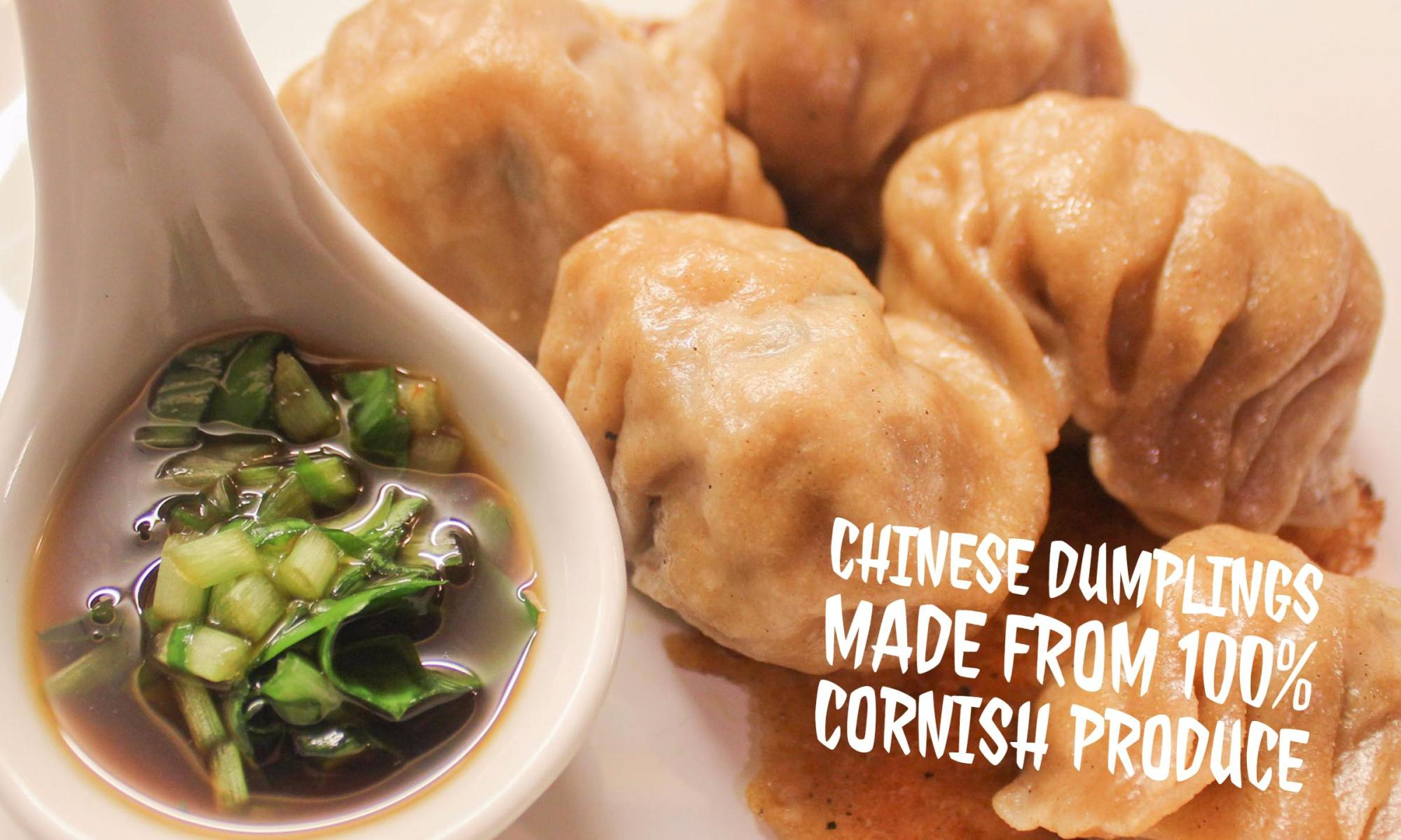chinesedumplings