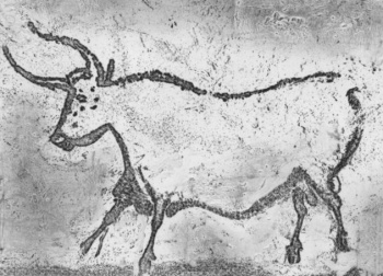 An auroch from the cave paintings of Lascaux