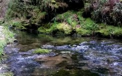 The river at Lydford Gorge, a National Trust property near Wheatland Farm's Devon eco lodges