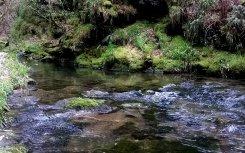 The river at Lydford Gorge, a National Trust property near Wheatland Farm's Devon eco lodges