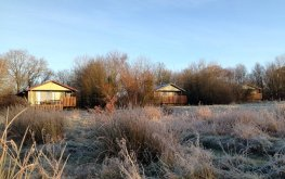 Honeysuckle, Nuthatch an Beech Eco Lodges at Wheatland Farm's Devon eco lodges, January 2017