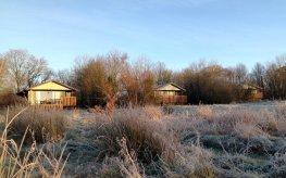 Honeysuckle, Nuthatch an Beech Eco Lodges at Wheatland Farm's Devon eco lodges, January 2017