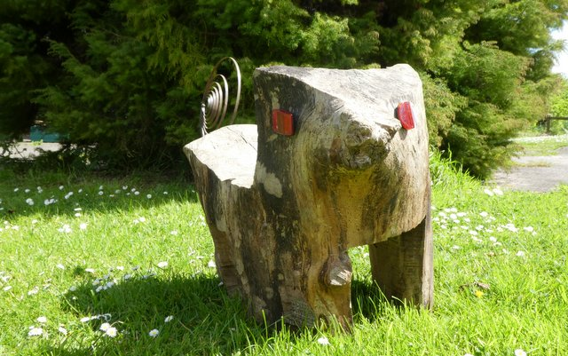 A seat shaped roughly like a pig carved from a tree trunk