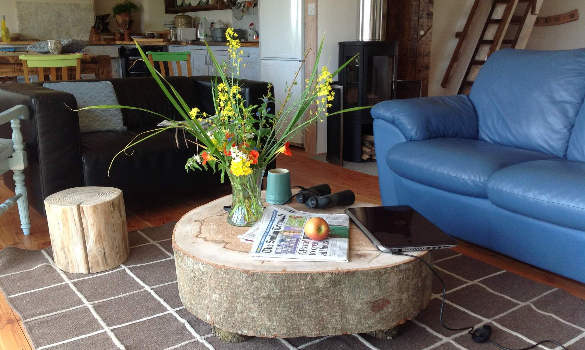 Inside Balebarn Eco Lodge, with quirky tree trunk coffee table