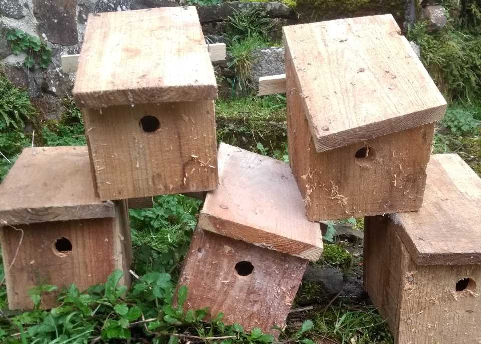 Bird boxes ready to be put up at Wheatland Farm's Devon Eco Lodges