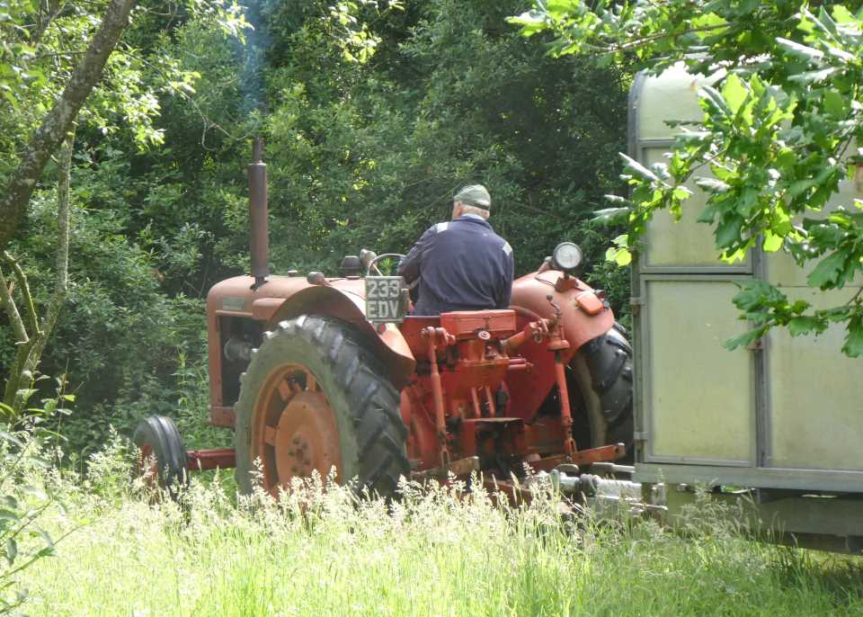Shows an old fashioned Devon tractor pulling a trailer through a wooded lane