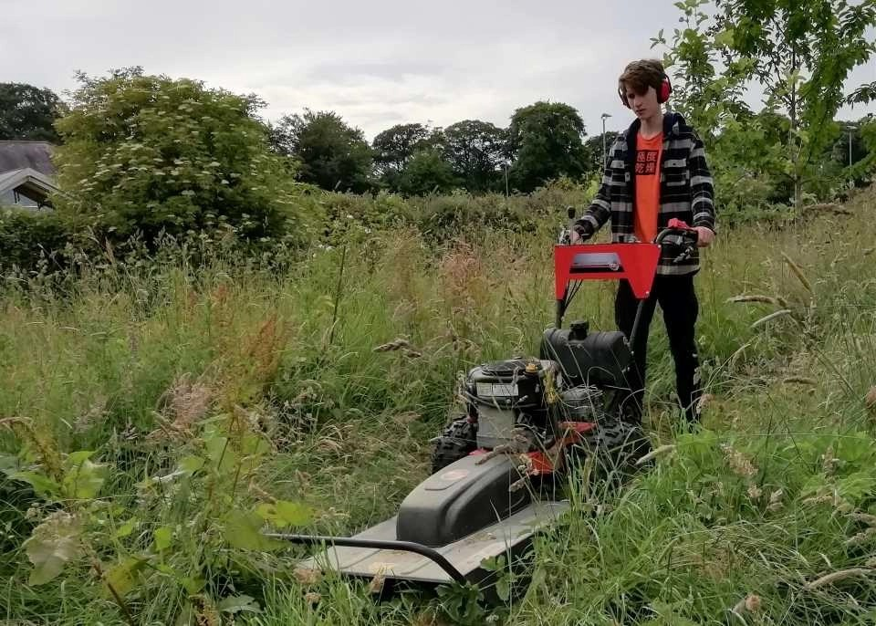 Shows mowing at Winkleigh's community biodiversity project