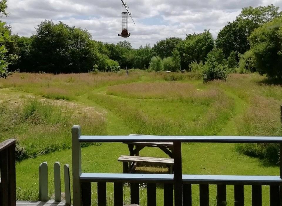 View from Honeysuckle Eco Lodge at Wheatland Farm, Devon