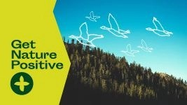 Get Nature Positive image