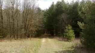 Camp Lowden Cabin camp_019
