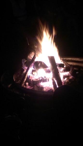 Warm and toasty!