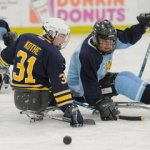 Join The Western Massachusetts Knights Sled Hockey Team