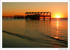 Yeah, THIS is what I was planning for! Jekyll Island, GA in Nov