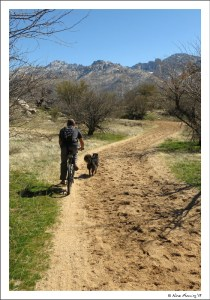 Biking on the trails in Catalina SP