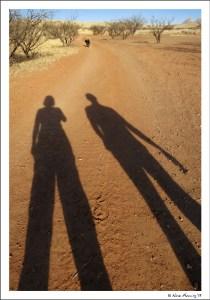 Afternoon shadows