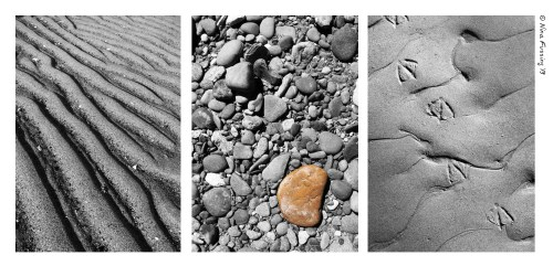 Meditations in sand. That's natures beauty for ya! (Click for larger view)