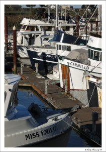 Boats in Brookings Harbor
