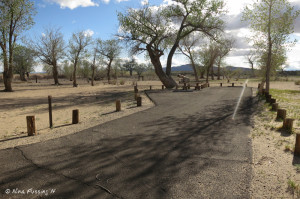 View of one of the longer/bigger sites in the campground