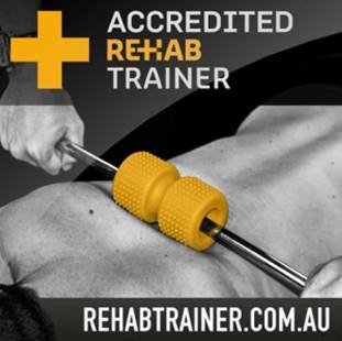 Rehab Trainer – The Gym Junkie Painful Shoulder