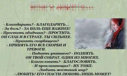 9jZbf_ovPmE