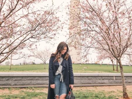 Washington DC Weekend: Dos & Don'ts