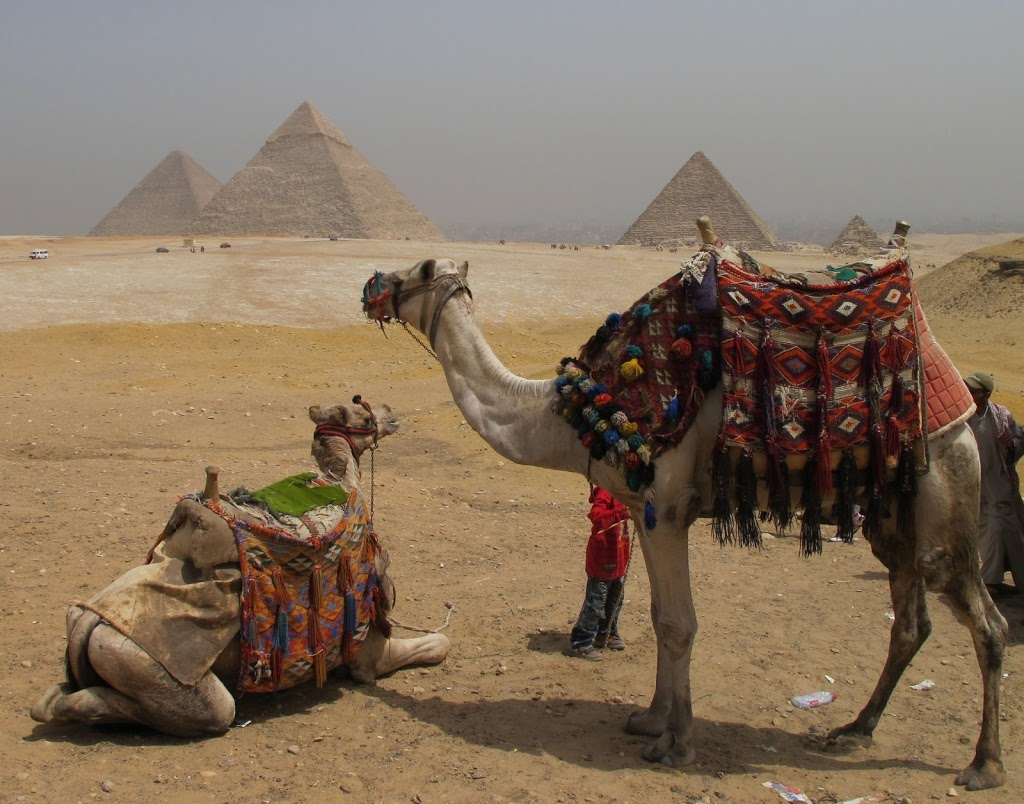 Riding Camels In Egypt Where Are Sue Amp Mike