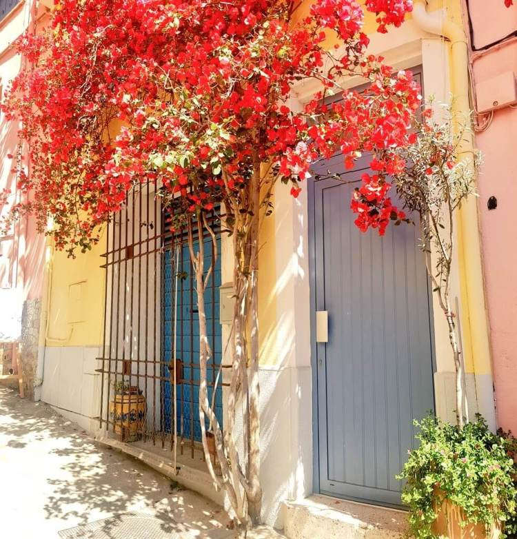 things to do collioure france hotels where is tara