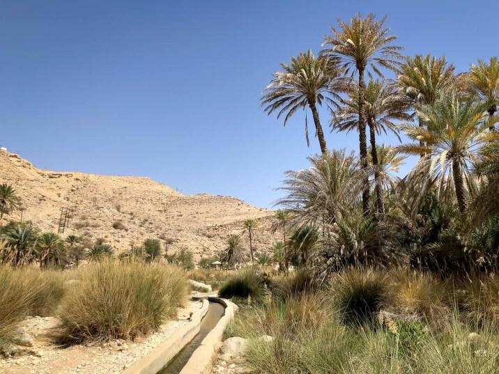 Wadis in Oman-5048