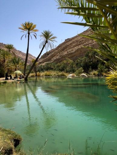 Wadis in Oman-5178