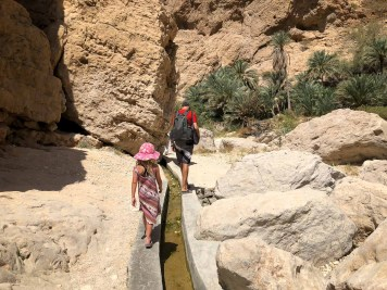 Wadis in Oman-5303