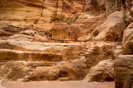 Petra with Kids-00030