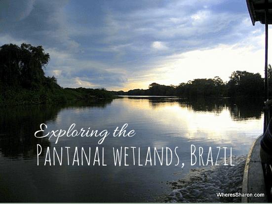 Exploring the Pantanal Wetlands Brazil