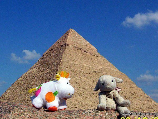 toy lamb and cow at Giza Pyramids