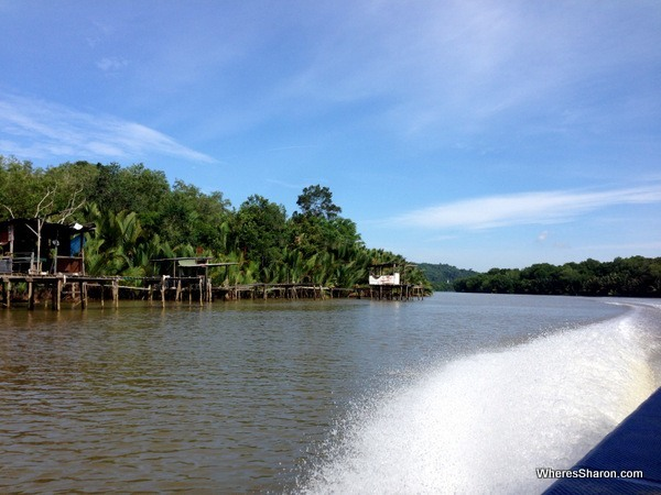 Views on the way to Bangar of Brunei rainforest