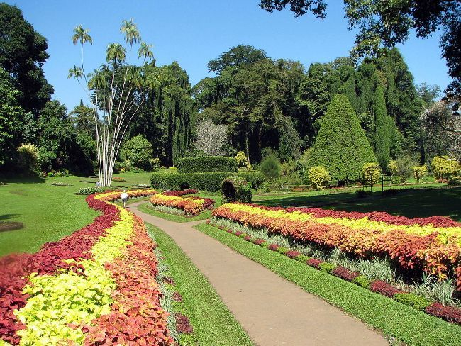 Botanical Garden of Peradeniya 03