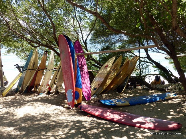 The surfboards at Surf Bar Gili Trawangan