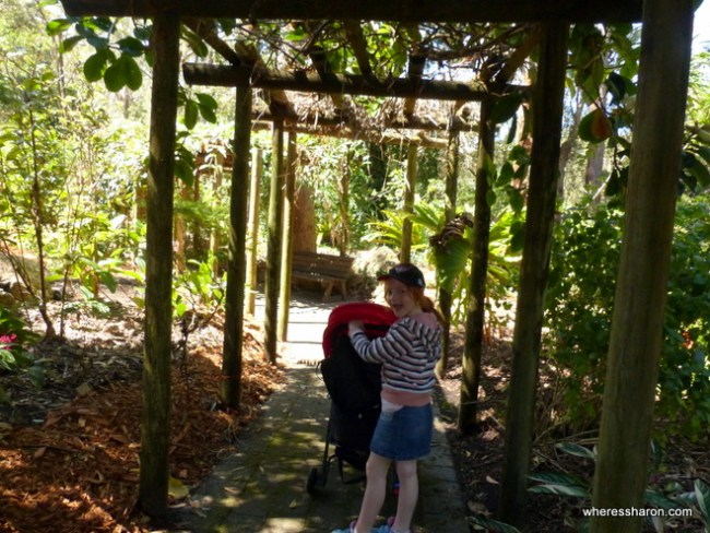 North Coast Regional Botanic Gardens