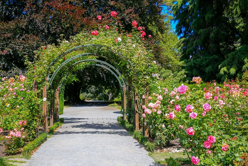 things for kids to do in christchurch at Christchurch Botanical Garden